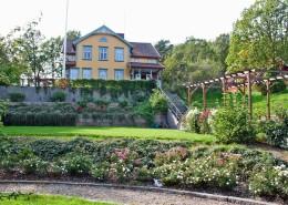 Rosenträdgården Start